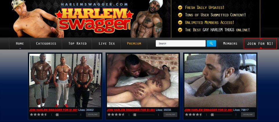 Best pay xxx website to get some amazing gay quality porn