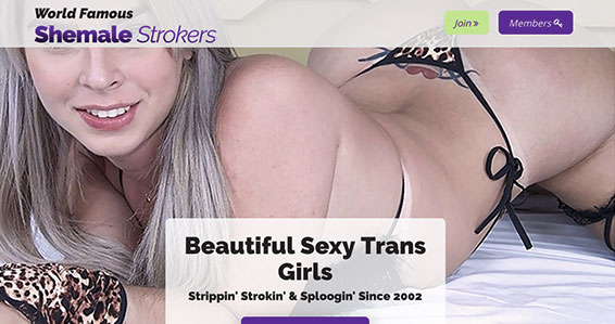 Recommended adult site if you like great shemale material