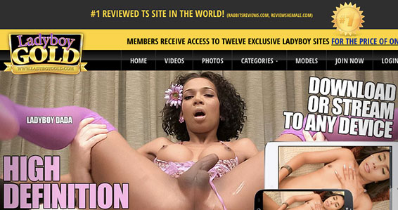Top adult website to get some amazing ladyboy Hd porn videos