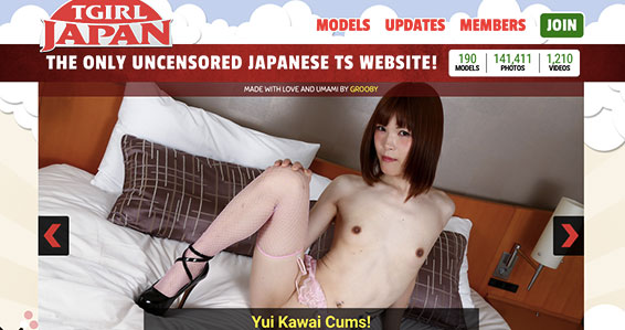 Recommended adult site providing awesome ladyboy HD videos