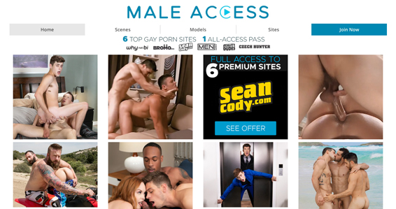 Great gay porn paysite with high-quality xxx content